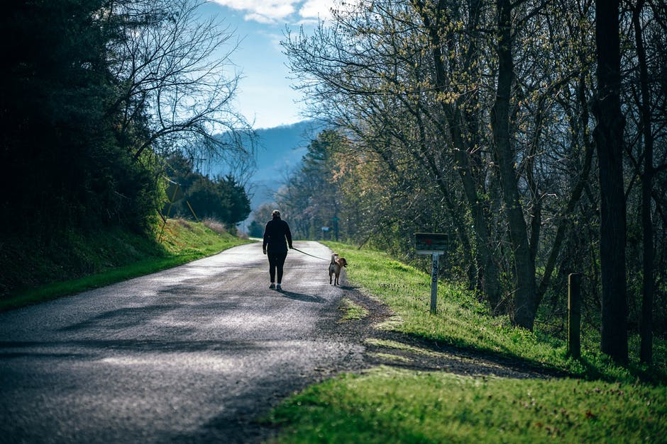 Man and Dog Walking in the Mountain