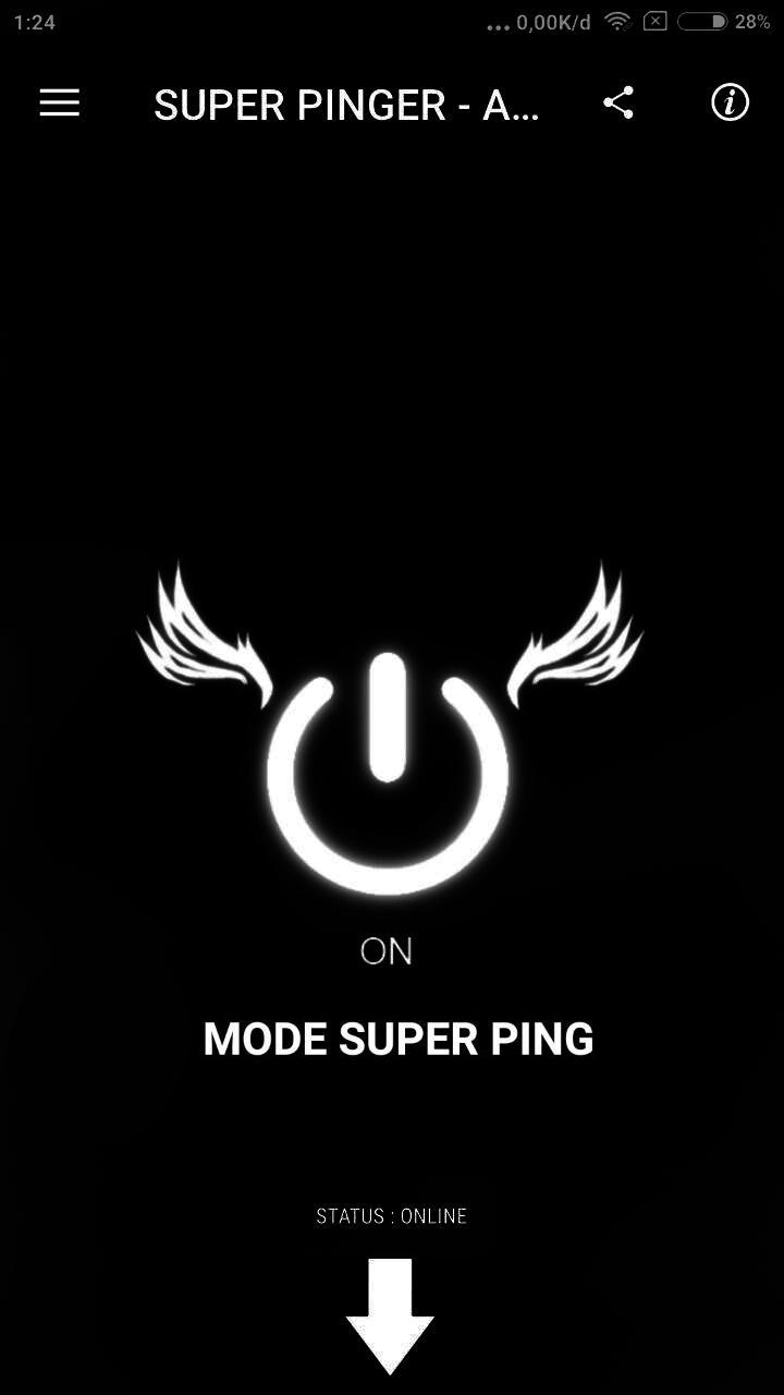 SUPER PINGER - Anti Lag (Pro version no ads) Screenshot 2