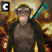 Apes Survival