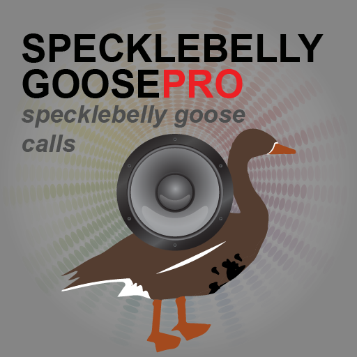 Specklebelly Goose eCaller- screenshot