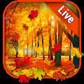 Autumn Leaves Live Wallpaper APK
