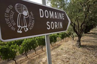 Photo: Domaine Sorin . AOC Bandol / Côte de Provence . Saint Cyr sur Mer . Var