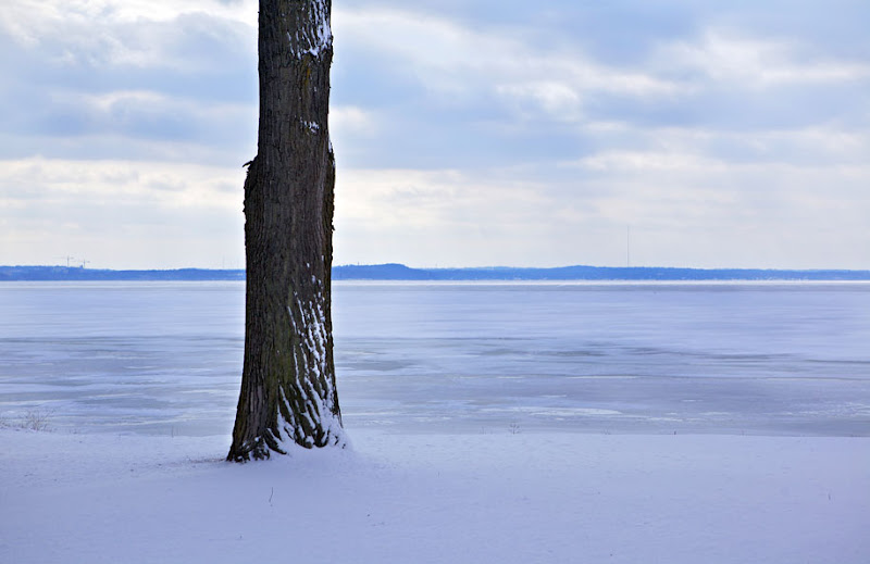 Photo: Looking out at Lake Mendota in Madison, Wisconsin.