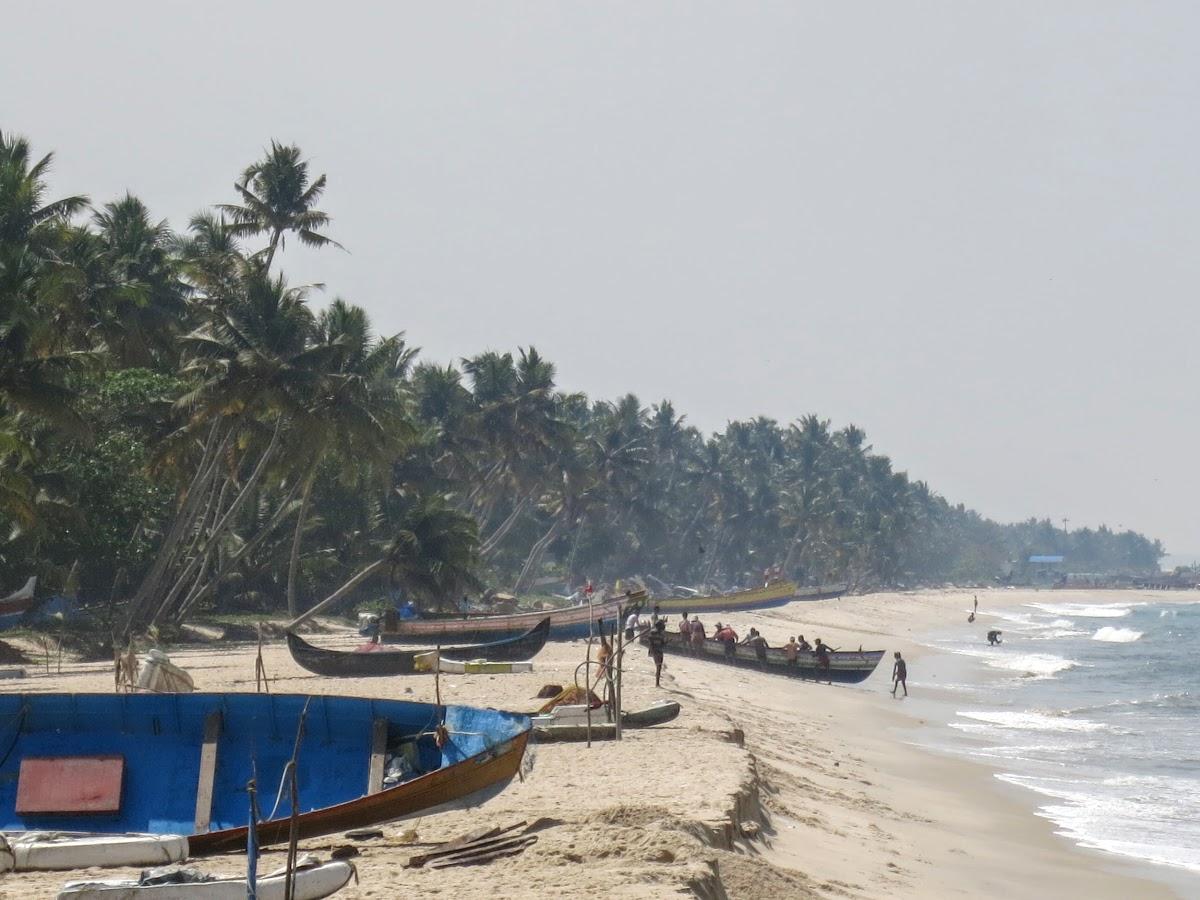India. Kerala Motorbike Road Trip. Boat back from fishing, Arabian Coast