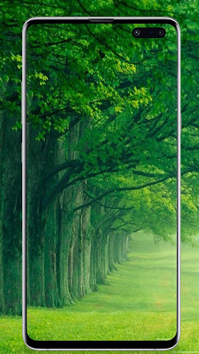 Nature Wallpaper 1.2.2 23