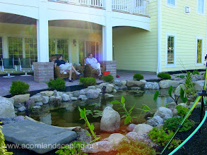 """Photo: Pittsford NY #BackyardPond, Stream and Waterfall along with Paver Patio and plantings by Acorn Ponds & Waterfalls of Rochester NY. Plantings for every season.  Acorn Ponds & Waterfalls, Certified Aquascape Contractor since 2004. Check out our website www.acornponds.com and give us a call 585.442.6373.  """"Acorn Ponds & Waterfalls did a great job and Tom Warmerdam was on site every day as our vision took shape. We love the final product and would recommend Acorn Ponds & Waterfalls for ponds, streams, waterfalls and landscaping."""" John C. Pittsford New York  To Learn more about this Water Feature Pond Pittsford NY, Backyard Koi #Pond with Patio and Landscaping Pittsford NY by Acorn Ponds & Waterfalls please click here: www.facebook.com/notes/acorn-landscaping-landscape-designlightingbackyard-water-gardens/water-feature-pond-pittsford-ny-backyard-koi-pond-with-patio-and-landscaping-pit/332499506787178  Acorn Ponds & Waterfalls of Rochester NY, 585-442-6373, is a Certified Aquascape Contractor, Landscape Designer, Outdoor Lighting Designer, Installer, Builder, Contractor and Design Service Company from Rochester, NY. We have professional Installation and Design Services available for the following: Landscape Design Outdoor Room Design Backyard Ponds and Waterfalls Design & Construction Patios and Walkways: Paver, Stone, Brick Low Voltage Landscape Lighting LED Landscape Lighting Swimming Ponds Ecosystem Ponds LED Outdoor Lighting Retaining Walls Fountains Water Features Pondless Waterfalls Pond Maintenance and Design Aquatic and Under Water LED Lights Bubbling Boulders and Urns Natural Stone Patios and Rock Gardens Garden Ponds Outdoor Kitchens Pizza Ovens Fire Pits Fish or Koi Ponds Waterfall Ponds Low Maintenance Plantings Commercial Landscape Design Residencial Landscape Design Drainage Issues, Solutions Aquascape Rainwater Collection Systems  We serve Pittsford NY, Penfield NY, Brighton NY, Fairport NY, Webster NY, Greece NY, Victor NY, Henrietta NY, Irondequoit"""