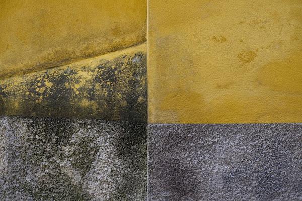 giallo, grigio e sfumature di elisabetta_de_carli