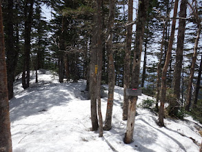 奥茶臼山山頂