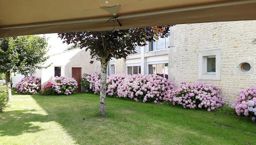 Gite Le Nid à Surgères en Aunis Marais poitevin près de La Rochelle jardin clos et ombragé fleuri hortensias roses