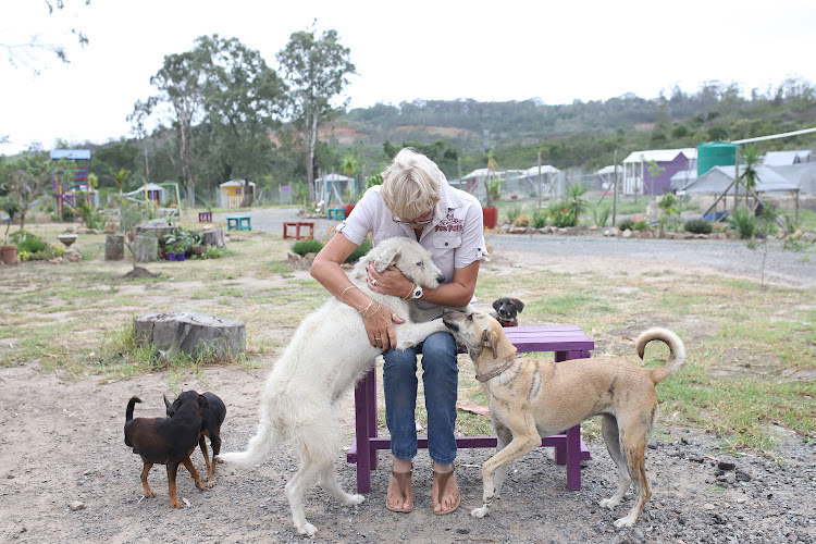 SANCTUARY: Sue Kriel at Pet Pals with some of the dogs she has rescued and rehabilitated.