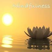 Mindfulness Frases y Audios