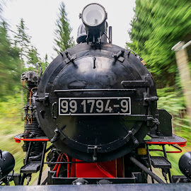 Steam and its speed... by Martin Namesny - Transportation Trains ( old, machine, steam, travel, speed, train, transportation, traffic )