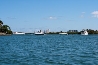 Photo: impressive boats in the park, Miami in the distance