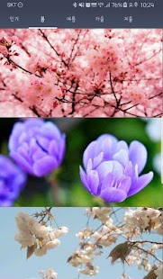 Spring/Summer/Autumn/Winter seasons wallpapers FHD - náhled