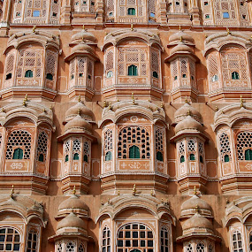 Palace of the winds in Jaipur by Janet Rose - Buildings & Architecture Architectural Detail ( palace winds jaipur,  )