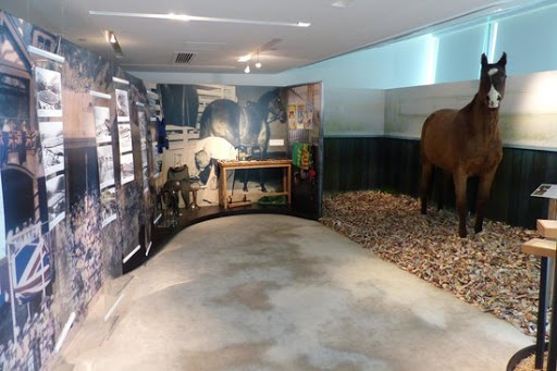 hong-kong-racing-museum-attractions-2