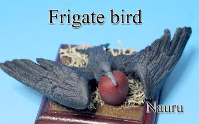 Frigate bird -Nauru-