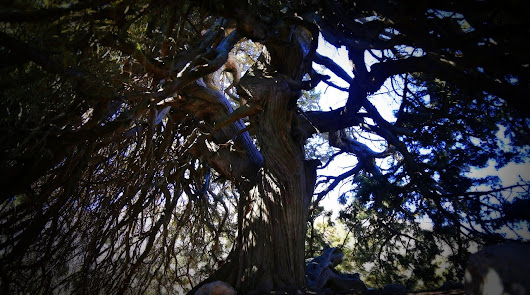 Chirivel, un lugar que esconde el mayor monumento natural