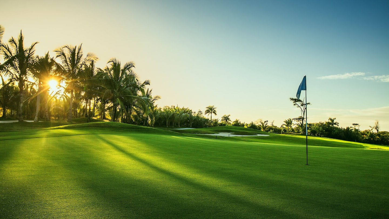 Watch PGA TOUR 2019: The Priceless Pursuit live
