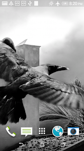 Download Black Crow 3D Wallpaper 2 0 APK for Android