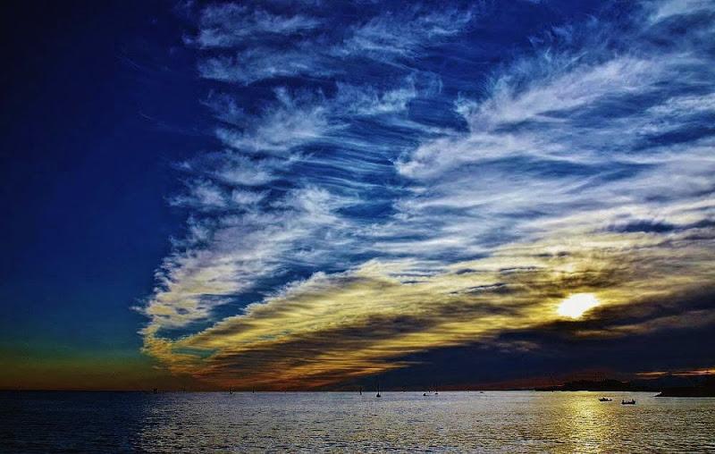 Non è solo una macchia scura il cielo... di ely50