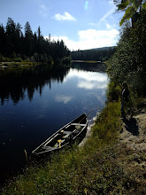 Photo: Canoe pulled in to one of the field sites