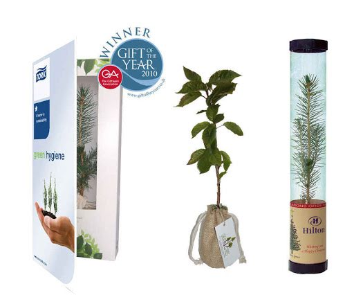 Promotional Living Trees with Custom Branded Labels