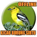Suara Burung Sirtu Pikat icon