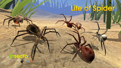 Life of Spider screenshot 18