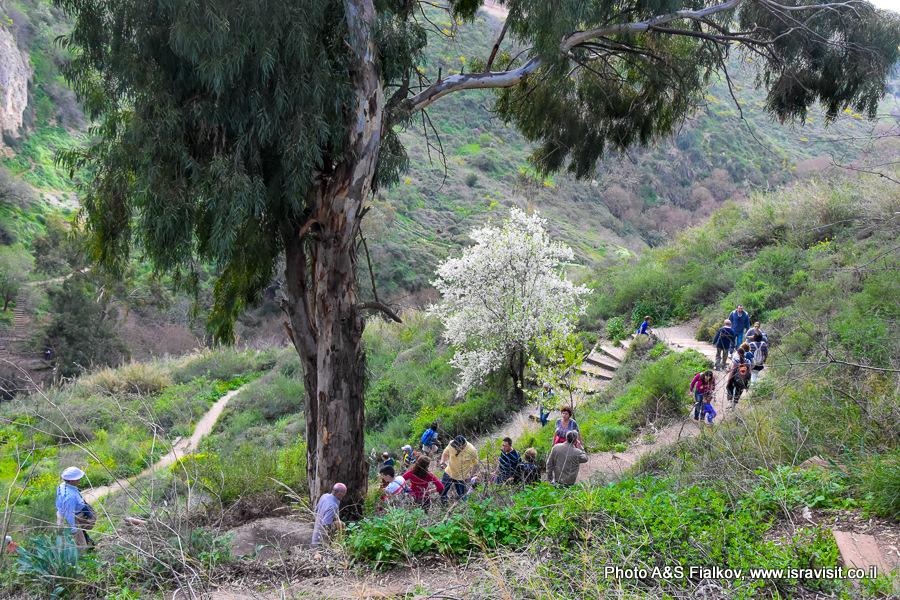 Маршрут экскурсии в национальном парке Нахаль Аюн.