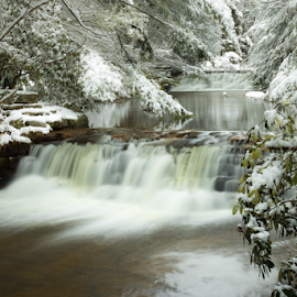 Hickory Run State Park by Dave Martin - Landscapes Weather (  )
