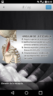 Fisioterapia a tu alcance- screenshot thumbnail