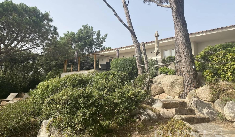 Villa Lecci