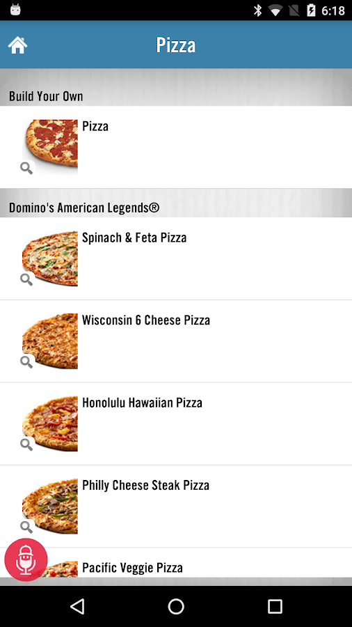 Domino's Pizza USA- screenshot