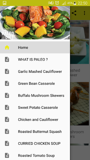 40+ Paleo Diet Recipes 1.1 screenshots 2