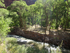 Photo: The beginning of the hike follows the North Fork Virgin River...
