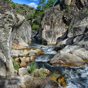 Stone river  by Katerina Mavrovska - Nature Up Close Rock & Stone