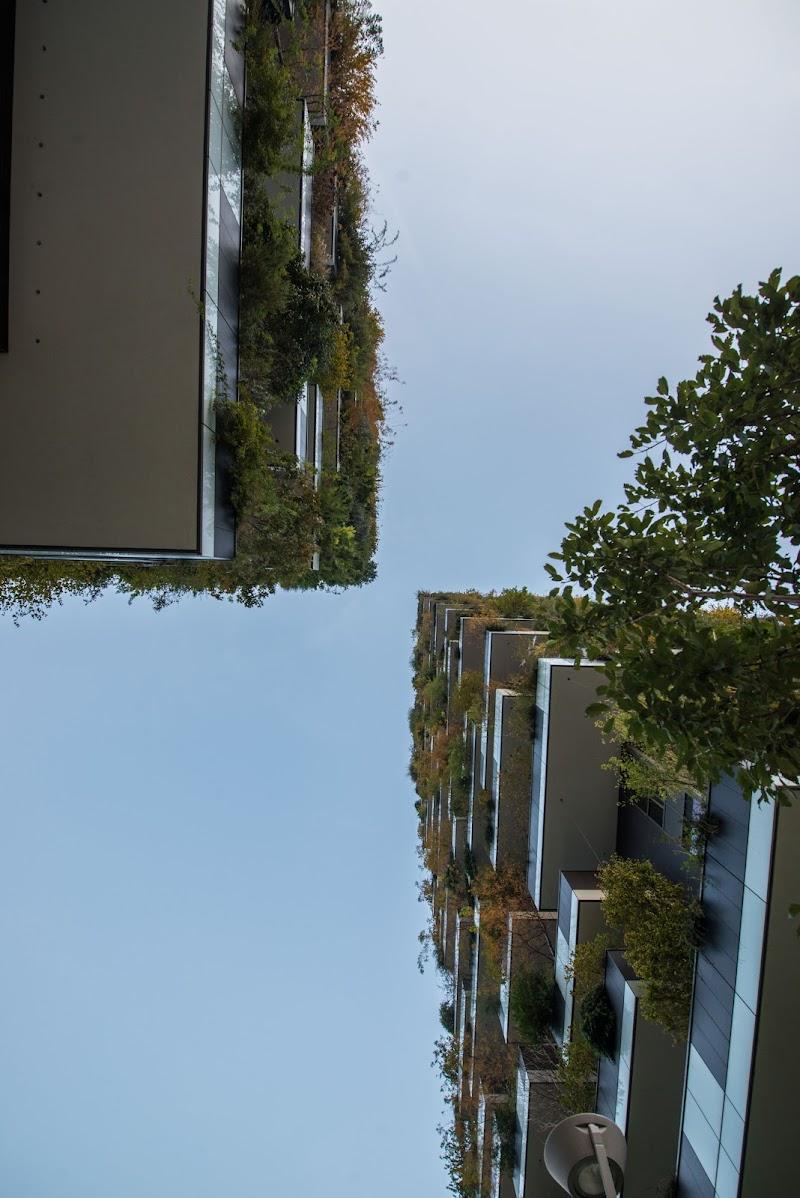 bosco verticale di walterferretti