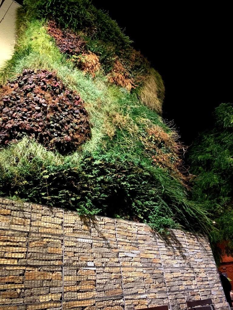 Plantas para jardines verticales de exterior en Azuqueca de Henares, Guadalajara