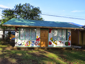Photo: In Torteguero there was the Calypso Music School.