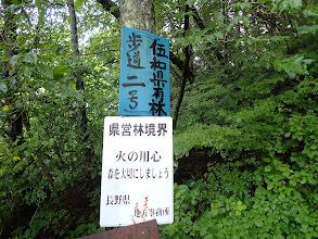 ここからは伍和県有林歩道二号を歩く