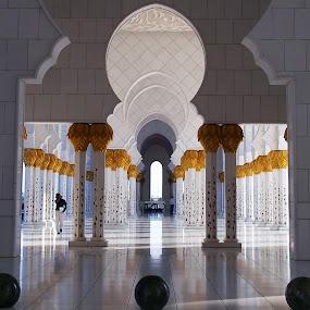 Abudhabi by Manoj Kumar Kd - Buildings & Architecture Places of Worship