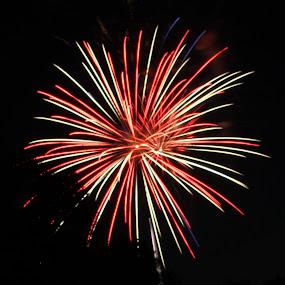 by Liz Huddleston - Abstract Fire & Fireworks ( fireworks, july, night )