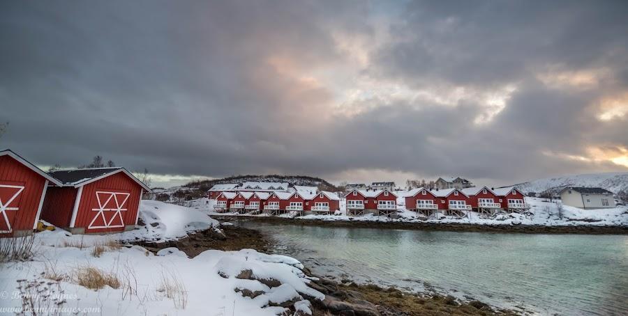 Cabins by Benny Høynes - Buildings & Architecture Other Exteriors ( cabin, houses, cabbage, cottage, landscape, norway )