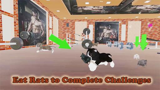 Kitten Cat Vs Six Pack Fitness Master in Gym screenshot 13