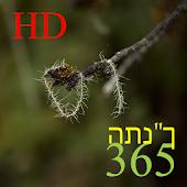 """365 התנ""""ך HD"""