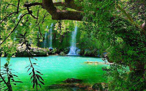 Waterfall Forest HD Wallpaper