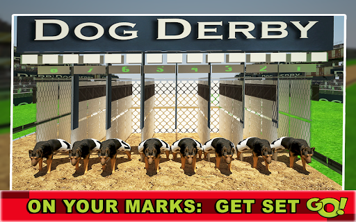 無料模拟Appの犬レーシング3Dシミュレータ|記事Game