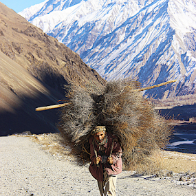 The Mountain Man by Fawad Hashmi - People Portraits of Men ( mountain, beautiful, landscape, lonely, portrait, man,  )