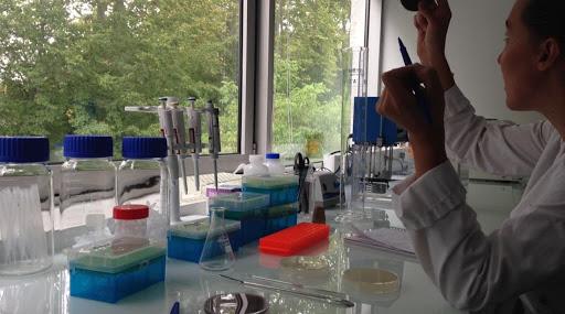 Molecular Biologist, Jan 2019